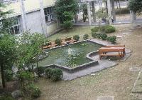 完成した中庭の「池」